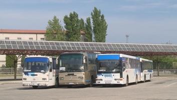 Szabadka: Iskolapadból az autóbusz kormánykereke mögé? - illusztráció