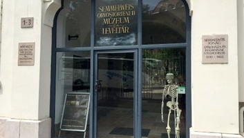 A járványok világáról indított blogot a Semmelweis Orvostörténeti Múzeum - illusztráció