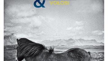 Lajkó Félix & VOLOSI közös albuma elnyerte a lengyel Fonogram-díjat - illusztráció