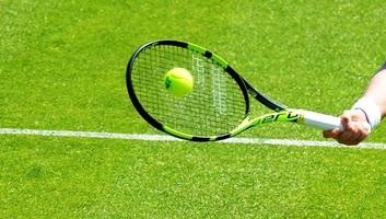 Tenisz: A teljes füves pályás szezont törölték - illusztráció