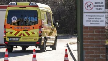 Meghalt 9 beteg, 817-re emelkedett a fertőzöttek száma Magyarországon - illusztráció