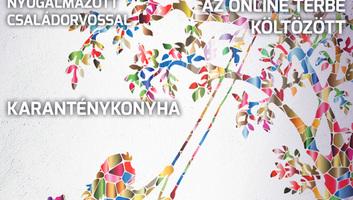 Hét Nap (április 8.): Karanténkonyha - illusztráció