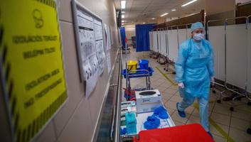 Meghalt 11 beteg, 895-re emelkedett a fertőzöttek száma Magyarországon - illusztráció
