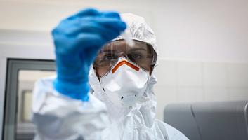 Csütörtöki koronavírus-mérleg: Szerbiában további 201 beteget regisztráltak, egy személy hunyt el - illusztráció