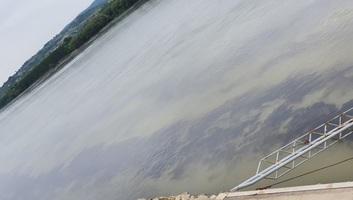 Hatalmas olajfolt a Dunán Újvidéknél - illusztráció