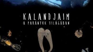 Június 7-én mutatják be a Kalandjaim a parányok világában című ismeretterjesztő filmet a Duna csatornán - illusztráció