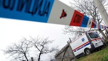 Meggyilkoltak egy házaspárt Karlócán, őrizetbe vették a fiukat - illusztráció
