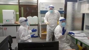Egy új áldozata van Szerbiában a koronavírusnak, 48 új esetet regisztráltak - illusztráció