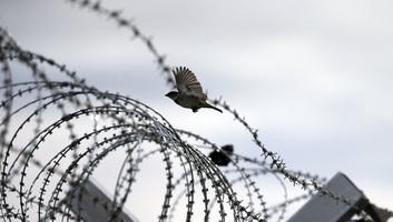 Közép- és kelet-európai EU-tagállamok levélben tiltakoznak a menekültek kötelező elosztása ellen - illusztráció
