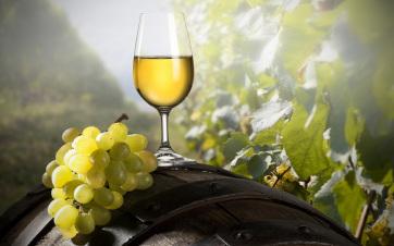 Közösen készítik el az Összetartozás borát a Kárpát-medence magyar borászai - A cikkhez tartozó kép