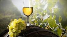 Közösen készítik el az Összetartozás borát a Kárpát-medence magyar borászai - illusztráció