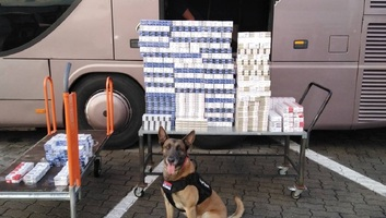 Horgos: Szagot fogott a kutya, cigarettacsempészeket buktatott le - illusztráció