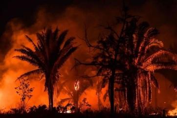 Az elmúlt 13 év legrosszabb júniusán van túl Brazília az erdőtüzek tekintetében - A cikkhez tartozó kép