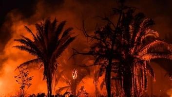 Az elmúlt 13 év legrosszabb júniusán van túl Brazília az erdőtüzek tekintetében - illusztráció