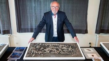 Tizenegymillió éves óriásteknős maradványait találták meg Németországban - illusztráció
