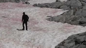 Rózsaszínűvé változott egy gleccser az olasz Alpokban - illusztráció