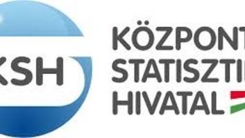 Szakmai beszélgetés indított a KSH online felületén - illusztráció
