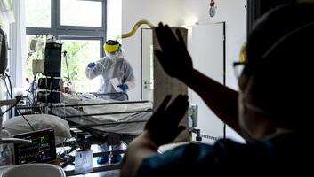 Meghalt két beteg, hárommal nőtt a fertőzöttek száma Magyarországon - illusztráció