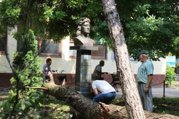 Kishegyes: Hatalmas fa dőlt a Mátyás-szoborra - A cikkhez tartozó kép