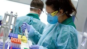 Átlépte a 19 milliót a koronavírussal fertőzöttek száma a világon - illusztráció