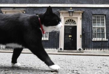 Visszavonul a brit külügy főegerésze - A cikkhez tartozó kép