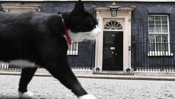 Visszavonul a brit külügy főegerésze - illusztráció