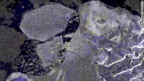 A széteséssel a négyezer éves selfjég területének 43 százalékát veszítette el