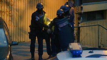 Újvidéki, topolyai és belcsényi személyekre csapott le a rendőrség szervezett akciója keretében - illusztráció