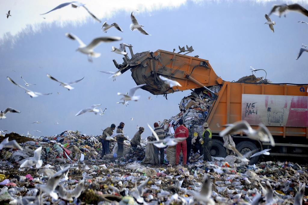 A szeméttelepekre vagy a természetbe kerülő újrahasznosítható hulladék miatt Szerbia évente legalább 100 millió eurót veszít