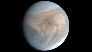 Az élet nyomaira bukkanhattak a Vénusz savas felhőiben - illusztráció