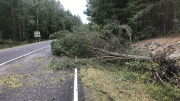 Pusztított az Aila vihar Finnországban - A cikkhez tartozó kép