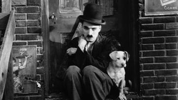 Chaplin filmek a Zágrábi Filharmónia aláfestő muzsikájával Szabadkán - A cikkhez tartozó kép