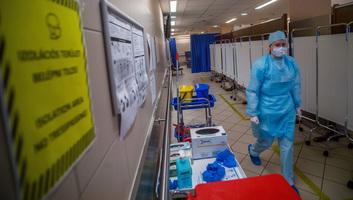 Hatan meghaltak, 941-gyel nőtt a fertőzöttek száma Magyarországon - illusztráció