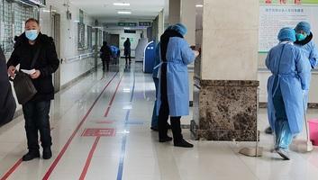 Meghalt 63 beteg, 2079-cel nőtt a fertőzöttek száma Magyarországon - illusztráció