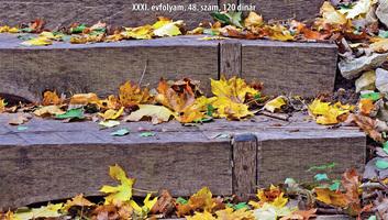 Családi Kör (2020. 11. 26.): Játék a fizetésekkel - illusztráció