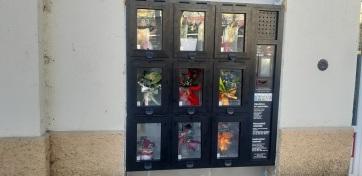 Zenta: Virágautomatát üzemeltek be a hétvégén a város központjában - A cikkhez tartozó kép