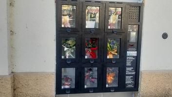 Zenta: Virágautomatát üzemeltek be a hétvégén a város központjában - illusztráció