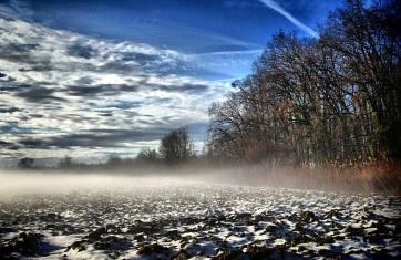 Téli gazdafórum 2021: Előadások a gazdák részére - A cikkhez tartozó kép