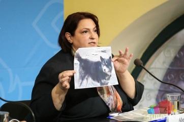 Hazulról megszökött kutyák támadták meg a szabadkai nőt? - A cikkhez tartozó kép