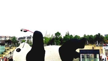 Szelfiző óriáspanda szobrát avatták fel Szecsuanban - illusztráció