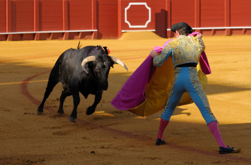 Másfél év szünet után újra bikaviadalt rendeztek Madridban - A cikkhez tartozó kép
