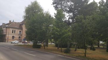 Kikérik a polgárok véleményét, milyen legyen Magyarkanizsa megújuló főtere - A cikkhez tartozó kép
