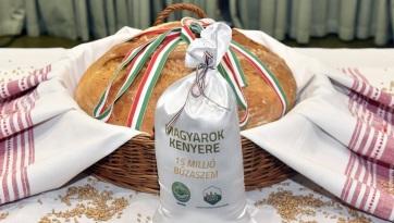 Felhívás a vajdasági mezőgazdasági termelőkhöz a Magyarok Kenyere program kapcsán - A cikkhez tartozó kép