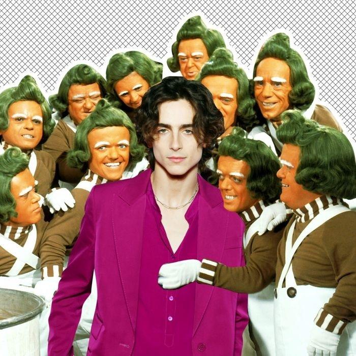 Timothee Chalamet alakítja majd a fiatal Willy Wonkát