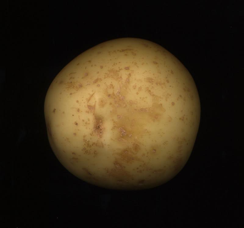 Kína megpróbál burgonyát termeszteni a Holdon