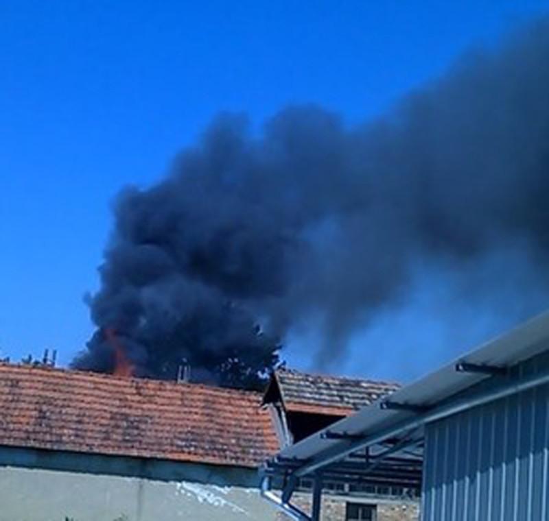 Zenta: Tűz volt az Ady Endre utcában