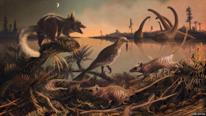 Az emlősök legősibb ismert elődjének maradványai kerültek elő Angliában