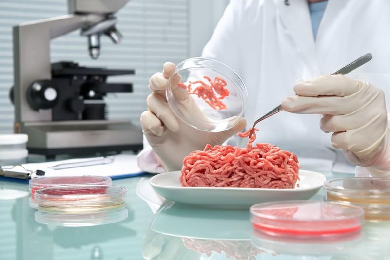 Alternatív élelmiszereket ajánlanak az európai tudósok