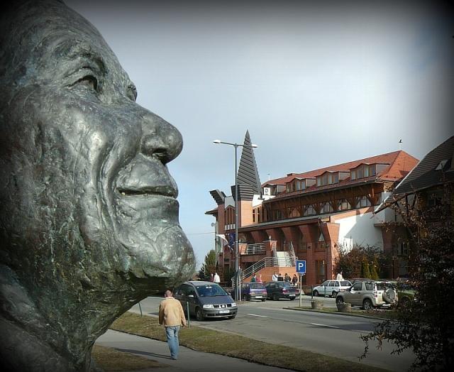 Potápi: Wass Albert otthonra talált Bonyhádon