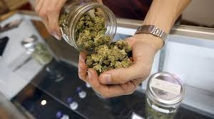 Több mint tizenhat kiló marihuánát találtak Röszkén